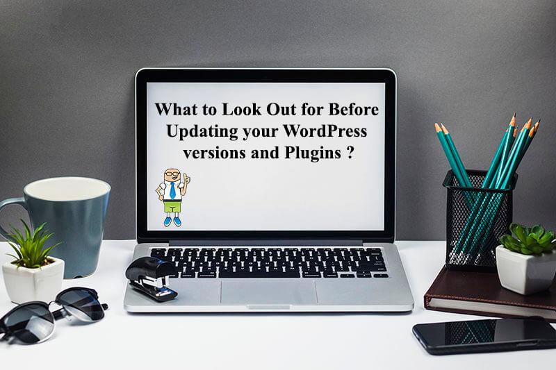 wordpress_version_plugin